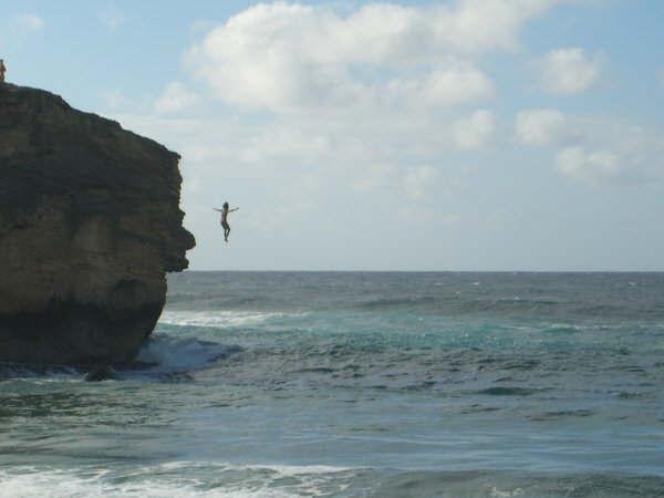 Tree jumping